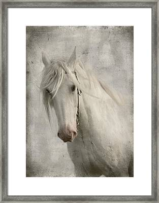 Amazing Grace Framed Print by Dorota Kudyba