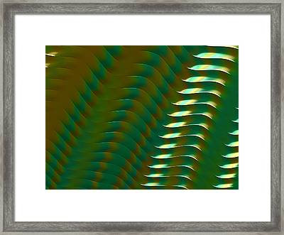 Amazon Framed Print by Darren Hayes