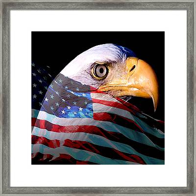 America The Beautiful Framed Print by Tray Mead