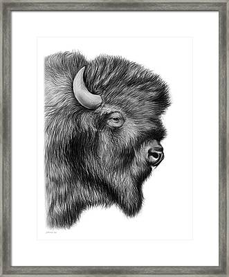 American Bison Framed Print by Greg Joens