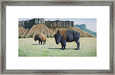 American Bison Framed Print by Joseph Kemeny