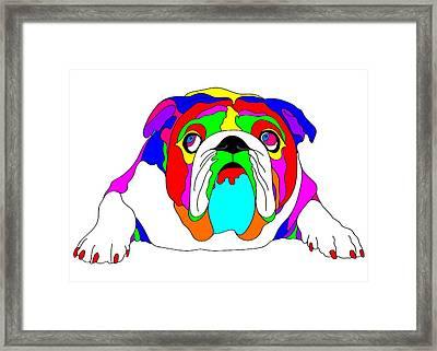 American Bulldog - Dog Art - Wpap Art Framed Print by Shara Lee