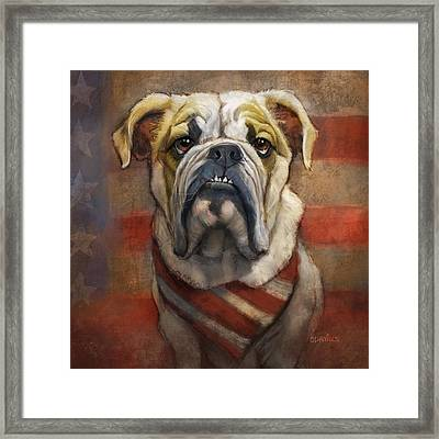 American Bulldog Framed Print by Sean ODaniels