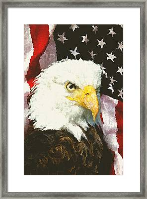 American Eagle Framed Print by Daniel Hagerman
