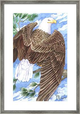 American Eagle Framed Print by Paul Brent