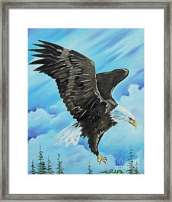 American Flight Framed Print by Joseph Palotas