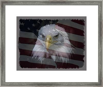 American Pride 2 Framed Print by Ernie Echols