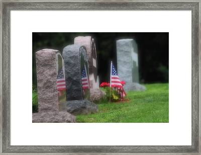 American Reflections Framed Print by Karol Livote