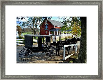 Amish Country Horse And Buggy Framed Print by Frozen in Time Fine Art Photography