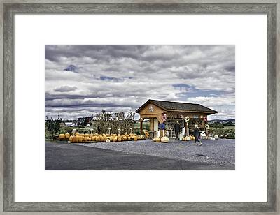 Amish Farm Framed Print by Eduard Moldoveanu
