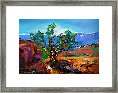 Among The Red Rocks - Sedona Framed Print by Elise Palmigiani
