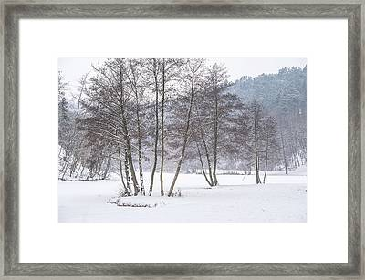 Among Winter Silence Framed Print by Jenny Rainbow