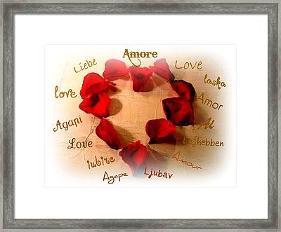 Amore  Framed Print by Kathy Bucari