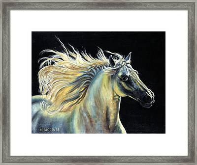 Amour D Etalon Framed Print by Josette SPIAGGIA