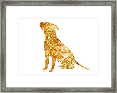 Amstaff Gold Silhouette Large Poster Framed Print by Joanna Szmerdt