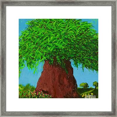 Amy's Tree Framed Print by Angela Annas