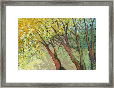 An Afternoon At The Park Framed Print by Jennifer Lommers
