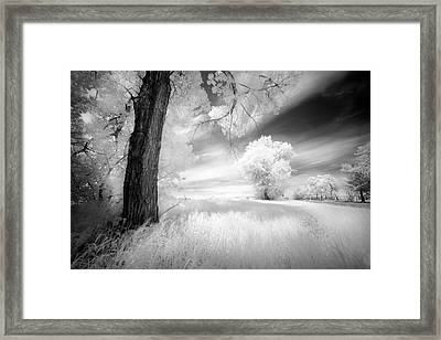 An Afternoon With My Daughter Framed Print by Dan Jurak