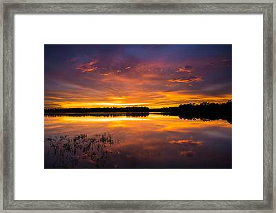 An Array Of Colors Framed Print by Parker Cunningham