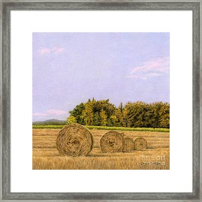 An Autumn Evening Framed Print by Sarah Batalka