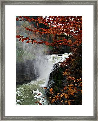 An Upper Letchworth Autumn Framed Print by Lianne Schneider