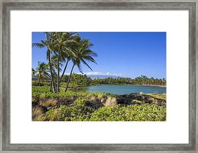 Anaehoomalu Bay Framed Print by Ron Dahlquist - Printscapes