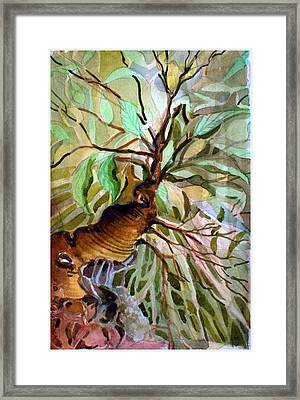 Ancient Roots Framed Print by Mindy Newman