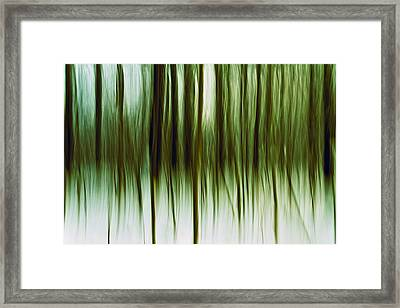 And Now For Something Completely Different  Framed Print by Gert Lavsen