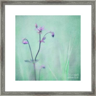 And Spring Came Framed Print by Priska Wettstein