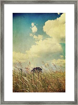 And The Livin's Easy Framed Print by Laurie Search