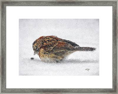 And These Thy Gifts  Framed Print by Lois Bryan