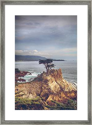 And Yet Here I Still Stand Framed Print by Laurie Search