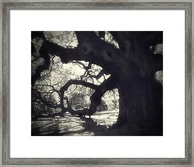 Angel II Framed Print by Amy Tyler