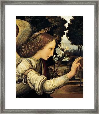 Angel Framed Print by Leonardo Da Vinci