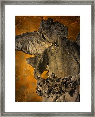 Angel Of Mercy Framed Print by Larry Marshall