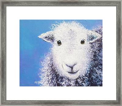 Angus  Framed Print by Jan Matson