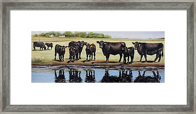 Angus Reflections Framed Print by Toni Grote
