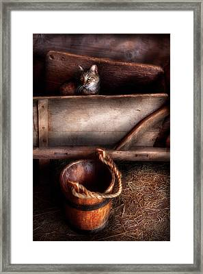 Animal - Cat - Push Me Framed Print by Mike Savad