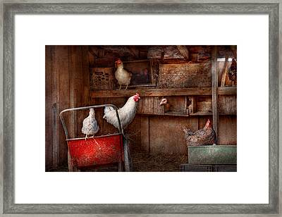 Animal - Chicken - The Duck Is A Spy  Framed Print by Mike Savad
