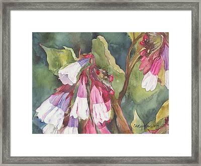 Antebellum Framed Print by Casey Rasmussen White