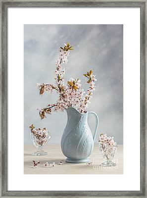 Antique Jug With Blossom Framed Print by Amanda And Christopher Elwell