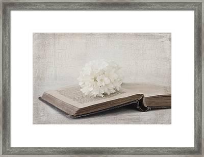 Antiqued Framed Print by Kim Hojnacki