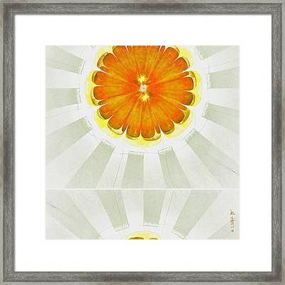 Apocopation Concord Flowers  Id 16165-104553-87970 Framed Print by S Lurk