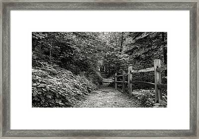 Appalachian Trail Trek Framed Print by Stephen Stookey
