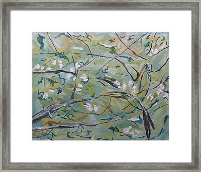 Apple Blossom 2 Framed Print by Francois Fournier