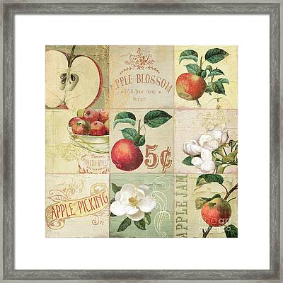 Apple Blossoms Patchwork II Framed Print by Mindy Sommers