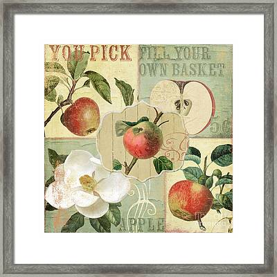 Apple Blossoms Patchwork IIi Framed Print by Mindy Sommers