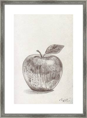 Apple Framed Print by Chad Glass