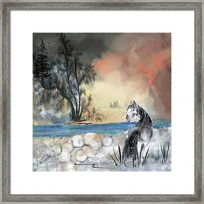Approaching Storm Framed Print by Elaine Weiss