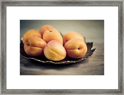 Apricots Framed Print by Nailia Schwarz